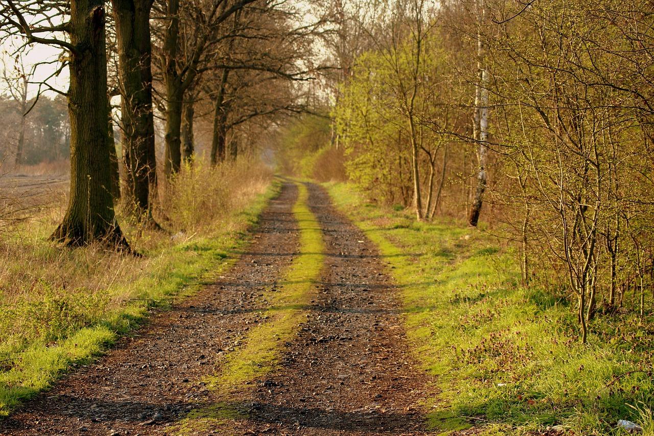 Intuição: 3 caminhos para desenvolver a sensibilidade 4